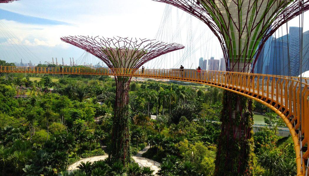Gardens by the Bay 83 - OCBC Skywalk by Steel Wool_CC2.0