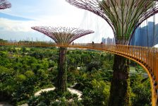 Gardens by the Bay 83 - OCBC Skywalk by Steel Wool_CC2.0
