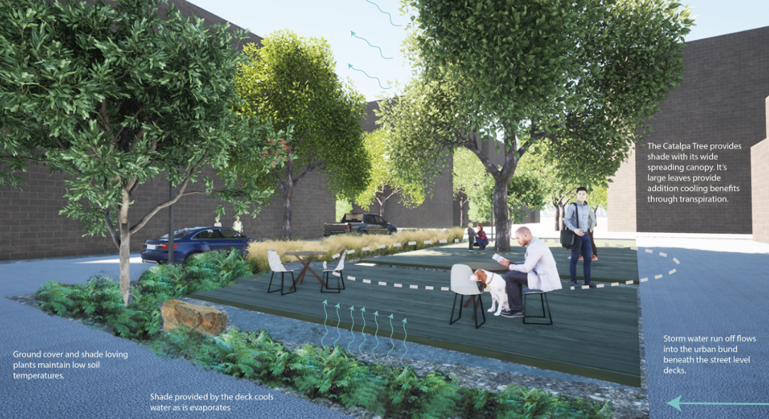 The urban cooling cell accommodates stormwater within an urban bund, which becomes a placemaking amenity with ground cover and shade trees. The elements come together to create a functional ecosystem out of stormwater infrastructure. Image: Dig Studio