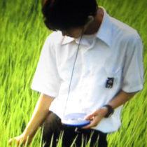 Profile picture of nguyenduylam