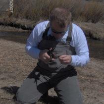 Profile picture of Jim Morgan, RLA