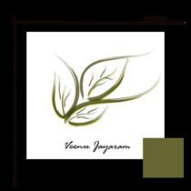 Profile picture of Veenu Jayaram