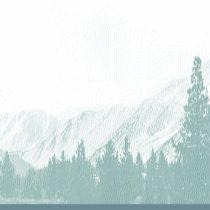 Group logo of ASLA - Sierra Chapter