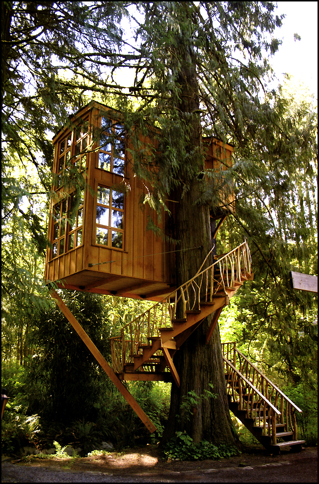 trillium treehouse washington original image credit pete nelson