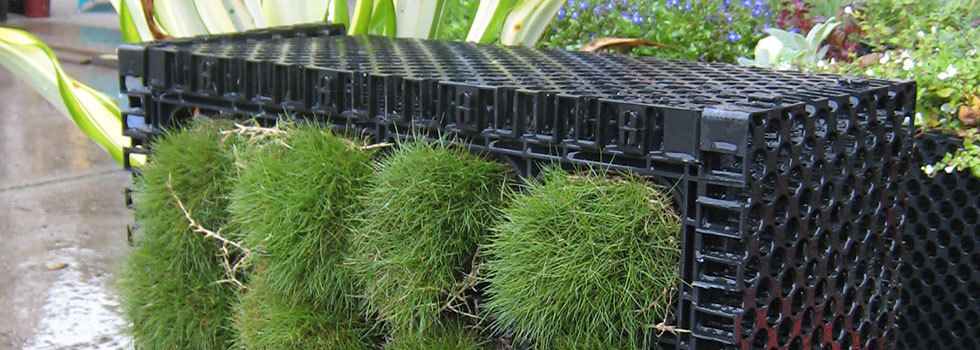 Sustainable landscaping design