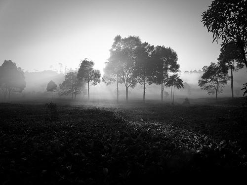 Sunrise in Patengan