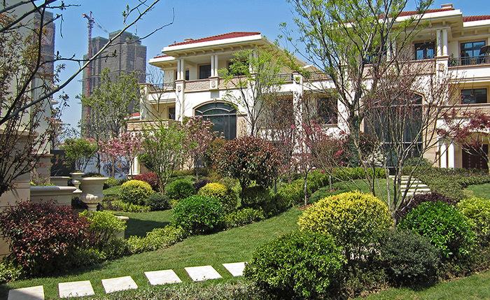 Villa backyard garden